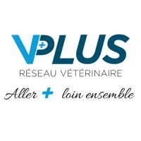 Clinique vétérinaire VPLUS de Saint-Aubin-de-Blaye